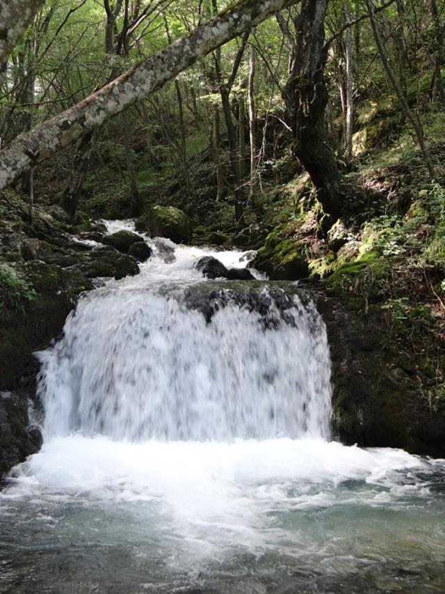 Cascada-Bigar-inedit