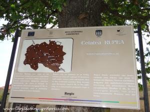 rupea2