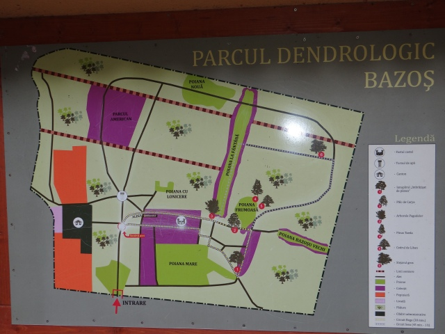 parcul-dendrologic-bazos