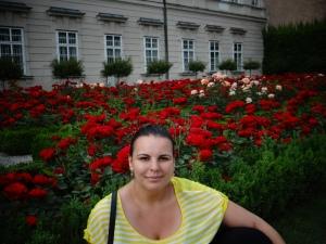 gradinile-mirabell-trandafiri
